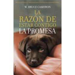 La razón de estar contigo: La Promesa