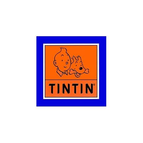 Colección Tintín (23 Tomos)